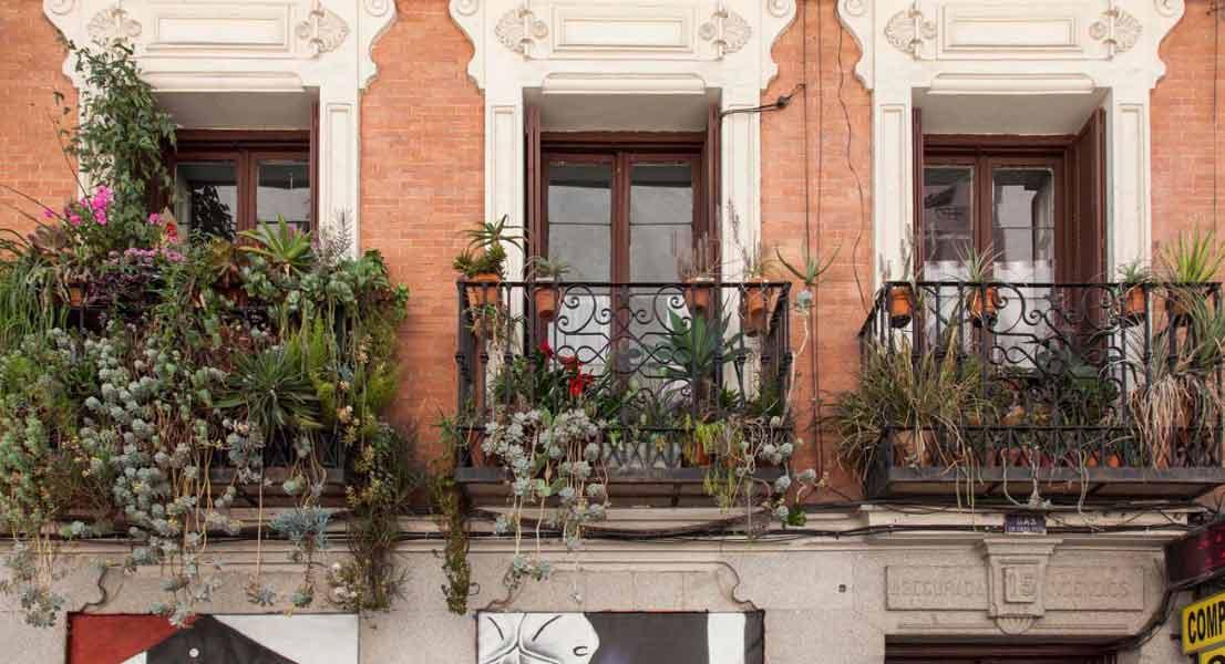 tres balcones con muchas plantas vistos desde fuera