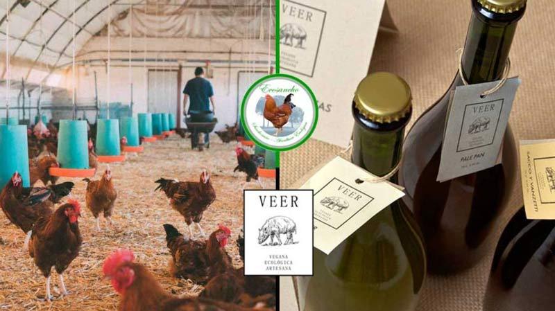 productos que ofrece el proyecto ecológico