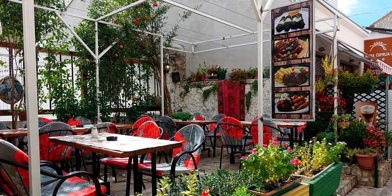 terraza madrileña con jardín botánico propio