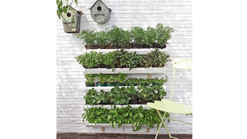 huerto vertical de cinco filas con diferentes plantas