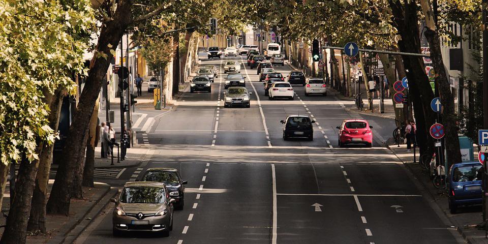 avenida con árboles y coches circulando