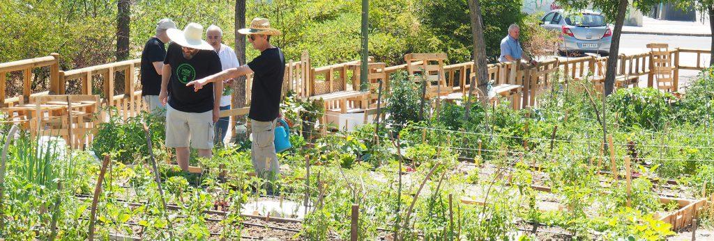 Vecinos en el huerto urbano comunitario