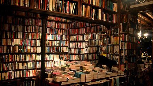 Tienda de libros de segunda mano en Madrid