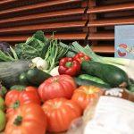 Madrid se une a la Red de Ciudades por la Agroecología