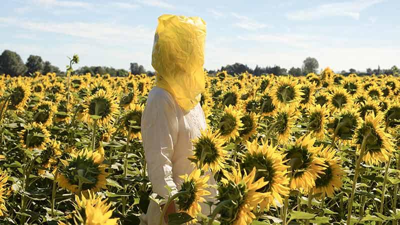 Obra de Elina Brotherus con un campo de girasoles y una mujer en medio llevando una bolsa amarilla en la cabeza