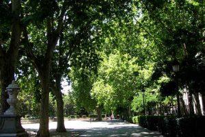 Paseo del Prado de Madrid.